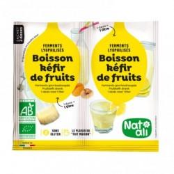 Kefir de fruits en poudre