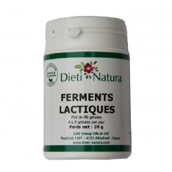 Gélules de ferments lactiques par 60